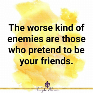 <3: The worse kind of  enemies are those  who pretend to be  your friends.  THE  Purple Stower <3