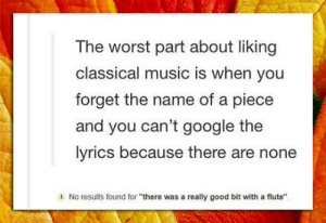 """Google, Music, and The Worst: The worst part about liking  classical music is when you  forget the name of a piece  and you can't google the  lyrics because there are none  1  No results found for """"there was a really good bit with a flute"""" srsfunny:Lyrics Not Found"""