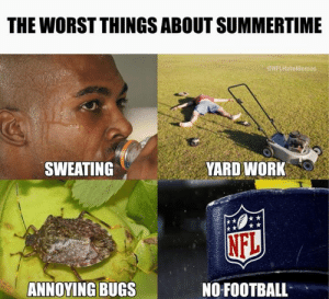 summertime: THE WORST THINGS ABOUT SUMMERTIME  NFLHateMemes  SWEATING  YARD WORK  NFL  ANNOYING BUGS  NO FOOTBALL