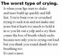 Crying, Dumb, and Fall: The worst type of crving.  Is when your lips start  and tears build up quickly and fall  fast. You're bent over or crouched  trying to suck it in and not make any  noise but it hurts too much to hold it  in so you let out a yelp and a cry then  comes the loss of breath which sucks  because not only you're crying out loud  but you think you sound dumb for not  breathing too  It's just a mess  to shake