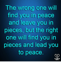 Memes, Peace, and 🤖: The wrong one will  find you in peace  and leave you in  pieces, but the right  one will find you in  pieces and lead you  to peace  RQ  RELATIONSHIP  UOTES
