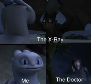 Doctor, Memes, and Dank Memes: The X-Ray  The Doctor  Me Crossing them hot memes