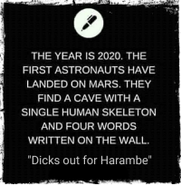 Harambee: THE YEAR IS 2020, THE  FIRST ASTRONAUTS HAVE  LANDED ON MARS. THEY  FIND A CAVE WITH A  SINGLE HUMAN SKELETON  AND FOUR WORDS  WRITTEN ON THE WALL.  Dicks out for Harambe