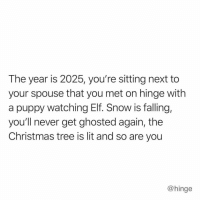 Af, Christmas, and Elf: The year is 2025, you're sitting next to  your spouse that you met on hinge with  a puppy watching Elf. Snow is falling,  you'll never get ghosted again, the  Christmas tree is lit and so are you  @hinge My future looks lit af ✨ @hinge hingepartner