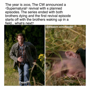 "Memes, Lucifer, and Supernatural: The year is 2030, The CW announced a  ""Supernatural"" revival with 6 planned  episodes. The series ended with both  brothers dying and the first revival episode  starts off with the brothers waking up in a  field... whats next?  @thesam.winchester  Dean?! Yes ik ""Bold of me to assume Spn will ever end"" but really what's next for@the brothers? 👇🏻 ———————- —————————- supernatural spn sam dean samwinchester deanwinchester supernaturalseason14 jaredpadalecki jensenackles spnscenes cas castiel jackkline mishacollins alexandercalvert demondean nephilim marywinchester spn14 bobbysinger crowley lucifer kingofhell"