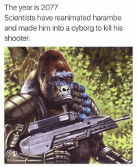 Dank Memes, Harambe, and Cyborg: The year is 2077  Scientists have reanimated harambe  and made him into a cyborg to kill his  shooter. skyNET is real