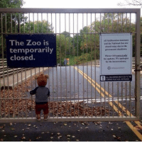 The absolute saddest photo you will see aww :(: The Zoo is  temporarily  closed.  All Saithsonian museums  and the National Zoo are  closed today due to the  government shutdown.  Pleave visit www.siedu  for updates, We apologize  for the inconvenience.  ALLDELIVERES MUST GO TO THE  CONNECTICUT AVE ENTRANCE The absolute saddest photo you will see aww :(