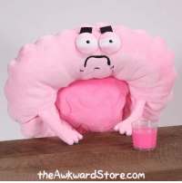 Memes, 🤖, and Plush: theAwkward Store.com Just one of those days. Pre-order the Irritable Bowels plush at theawkwardstore.com