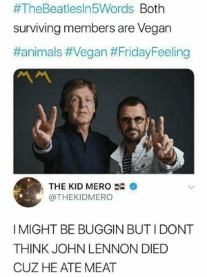 An interesting title:  #TheBeatlesin5Words Both  surviving members are Vegan  #animals #Vegan #FridayFeeling  ベへ  THE KID MERO  @THEKIDMERO  I MIGHT BE BUGGIN BUT I DONT  THINK JOHN LENNON DIED  CUZ HE ATE MEAT An interesting title