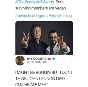 George died by smoking jerky obviously:  #TheBeatlesin5Words Both  surviving members are Vegan  #animals #Vegan #FridayFeeling  THE KID MERO  @THEKIDMERO  I MIGHT BE BUGGIN BUT I DONT  THINK JOHN LENNON DIED  CUZ HE ATE MEAT George died by smoking jerky obviously