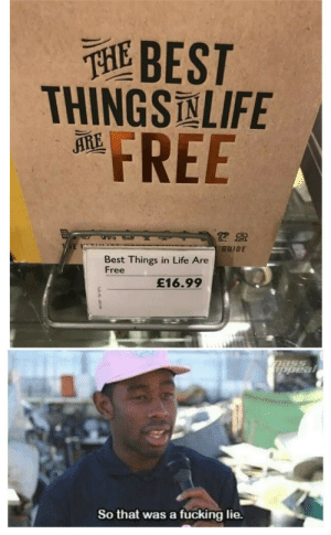 appeal: THEBEST  THINGSNLIFE  FREE  ARE  GUIDE  Best Things in Life Are  Free  £16.99  Dass  appeal  So that was a fucking lie.