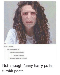 Funny Harry: thebohemiancircus:  the-fake-secret-diary  Lorde voldemort  No we'll never be mortals  Not enough funny harry potter  tumblr posts