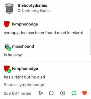 80+ Fresh Tumblr Posts | Page 37 of 42 | funnynmemes: thebootydiaries  thebootydiaries  lymphonodge  scrappy doo has been found dead in miami  mosshound  is he okay  lymphonodge  hes alright but he died  Source: lymphonodge  255 807 notes 80+ Fresh Tumblr Posts | Page 37 of 42 | funnynmemes