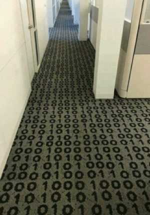 thebuttkingpost: Good news everyone skyrim has been ported to the Bethesda offices carpet : thebuttkingpost: Good news everyone skyrim has been ported to the Bethesda offices carpet