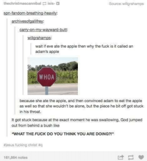 """Seems plausible, minus the cursing: thechristmascannibal isis-  Source: willgrahamps  spn-fandom-breathing-heavily  archivesofgallifrey:  wait if eve ate the apple then why the fuck is it called an  adam's apple  WHOAİ  because she ate the apple, and then convinced adam to eat the apple  as well so that she wouldn't be alone, but the piece he bit off got stuck  in his throat.  It got stuck because at the exact moment he was swallowing, God jumped  out from behind a bush like  """"WHAT THE FUCK DO YOU THINK YOU ARE DOING?!""""  #jesus fucking christ #q  161,864 notes  け Seems plausible, minus the cursing"""