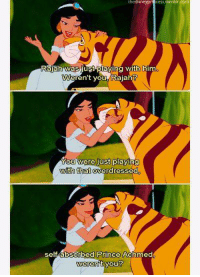 Aladdin, Memes, and Prince: thedisneyP  Rajah was just playing with him  eren't you Rajah?  OU Were just  playing  with that overdressed  self absorbed Prince Achmed  weren't you? Aladdin