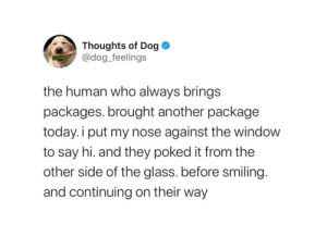 thedogfeelings:  I do love the UPS driver, he's my small neighbourhood human, always gives me treats.You can follow ups-dogs on Tumblr here: thedogfeelings:  I do love the UPS driver, he's my small neighbourhood human, always gives me treats.You can follow ups-dogs on Tumblr here