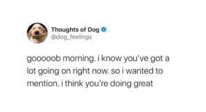 thedogfeelings:  stay safe everyone: thedogfeelings:  stay safe everyone