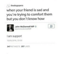 Memes, Queen, and Sad: thedogopera  when your friend is sad and  you're trying to comfort them  but you don't know how  John McDonnell MP  ohnmcdonnellMP  I am support  3/05/2016, 23:30  347 RETWEETS 257 LIKES I'm rereading the dark artifices and I'm so concerned Clary is going to be killed in queen of air and darkness