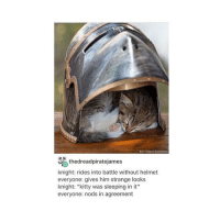 """Kitties, Memes, and Run: thedreadpiratejames  knight: rides into battle without helmet  everyone: gives him strange looks  knight: """"kitty was sleeping in it""""  everyone: nods in agreement i just went running ew how dare i be so productive"""