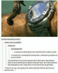 gallifrey: thefingertuckingtematcfury  manta-rays on-gallifrey  neilnevins  stunningnicture  A seahorse admiring his own reflection from a divers watch  or maybe he's checking the fucking time. seahorses got places to  go too y'know  The seahorse is one of the slowest fish in the ocean, the smallest  able to move themselves at about 6 feet per hour. So if that seahorse  has someplace to be I hope they ve left a lot of time to get there  There is no way l am going to be able to pick the kids up from soccer  practice now...