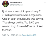 "Saw, Stan, and Http: thefourthvine  @thefourthvine  I just saw a man pick up and carry 2  IWO) golden retrievers. Large ones  One on each shoulder. He was saying,  ""You always do this. You SAID you  wanted to go for a walk!"" as he picked  them up  7:46 PM 2018-12-19 Tweetbot for ioS We stan 2 wholesome golden retrievers via /r/wholesomememes http://bit.ly/2tl7p26"