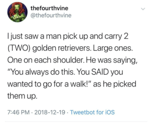 "Lazy, Memes, and Saw: thefourthvine  @thefourthvine  I just saw a man pick up and carry 2  IWO) golden retrievers. Large ones  One on each shoulder. He was saying,  ""You always do this. You SAID you  wanted to go for a walk!"" as he picked  them up  7:46 PM 2018-12-19 Tweetbot for ioS positive-memes: Lazy doggos"