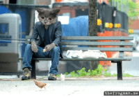 "<p><a href=""http://pralinesanddick.tumblr.com/post/676738509/caturday-sad-cat-sad-keanu-sad-cat-keanu"">pralinesanddick</a>:<a href=""http://caturday.tumblr.com/post/676735210/sad-cat-sad-keanu-sad-cat-keanu"">caturday</a>:<a href=""http://thedailywh.at/post/657251165/brb-ing-forever-reddit"">Sad Cat</a> + <a href=""http://www.blameitonthevoices.com/2010/06/keanu-reeves-meme.html"">Sad Keanu</a> = Sad Cat Keanu</p> <blockquote> <blockquote></blockquote>  </blockquote>: thefrogman.me <p><a href=""http://pralinesanddick.tumblr.com/post/676738509/caturday-sad-cat-sad-keanu-sad-cat-keanu"">pralinesanddick</a>:<a href=""http://caturday.tumblr.com/post/676735210/sad-cat-sad-keanu-sad-cat-keanu"">caturday</a>:<a href=""http://thedailywh.at/post/657251165/brb-ing-forever-reddit"">Sad Cat</a> + <a href=""http://www.blameitonthevoices.com/2010/06/keanu-reeves-meme.html"">Sad Keanu</a> = Sad Cat Keanu</p> <blockquote> <blockquote></blockquote>  </blockquote>"
