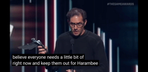 never forget:  #THEGAMEAWARDS  believe everyone needs a little bit of  right now and keep them out for Harambee never forget