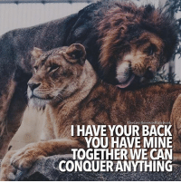 Be with someone who brings out the best in you. LIKE & TAG YOUR PARTNER!: TheGentlemensRulebook  I HAVE YOUR BACK  YOU HAVE MINE  TOGETHER WE CAN  CONQUER ANYTHING Be with someone who brings out the best in you. LIKE & TAG YOUR PARTNER!
