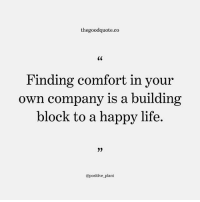 Follow @thegoodquote.co for more quotes. thegoodquote 🌻: thegoodquote.co  Finding comfort in your  own company is a building  block to a happy life.  @positive plant Follow @thegoodquote.co for more quotes. thegoodquote 🌻
