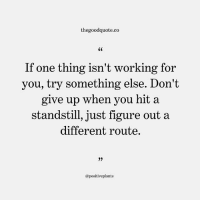 Follow @thegoodquote.co for more quotes. thegoodquote 🌻: thegoodquote.co  If one thing isn't working for  you, try something else. Don't  give up when you hit a  standstill, just figure out a  different route.  0)  @positiveplants Follow @thegoodquote.co for more quotes. thegoodquote 🌻