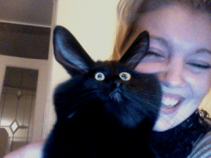 "Saw, Tumblr, and Blog: thegoodvybe: worldofmarije:  A while ago, I was playing around with Photo Booth. I put my cat in front of the camera and I almost died laughing when he saw himself. He was so shocked!  ""WHAT HAVE I BECOME"""