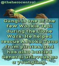Gungi Is One Of The Few Wookie Jedi During The Clone Wars He Helped Rescue Ashoka Tano Froma Pirates And Has Also Battled Gungi He S Easily In My Top Ten Favorite The clone wars i thought the character seemed like a bit of a stretch, but i came to appreciate the uniqueness of a wookie jedi. meme