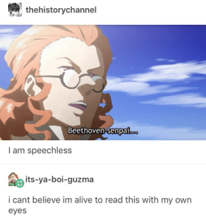 Guzma : thehistorychannel  Beethoven-senpa.  I am speechless  its-ya-boi-guzma  i cant believe im alive to read this with my own  eyes