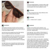 "<p>Wholesome glasses via /r/wholesomememes <a href=""http://ift.tt/2tu82rf"">http://ift.tt/2tu82rf</a></p>: thehobbutts  these are colorblind glasses. im about to take a walk  around the neighborhood and experience colors like  normal people. wish me luck, updates to come.  thehobbutts  the trees. holy shit the trees. theyre different colors.  like, a million different colors  thehobbutts  grass.... it ooks so soft. so gree..  thehobbutts  thehobbutts  after laying in the grass for about an hour staring at  the autumn leaves and laughing at how blue the sky is,  i have some insight to share:  rainbows. let me tell you about rainbows. i see  rainbows as various shades of brown and yellow, plus  some blue. vaguely purple.  why the fuck do you people buy red cars like i had no  idea how bright and obnoxious they looked  a few days ago, i saw a rainbow in these glasses. it  had just finished raining and then the sun came out,  and my friend and i scrambled out the door.  there are BERRIES on the trees. like bright red. id never  noticed them because they blended in. a new problem saw green. red. orange. real, actual violet  has arisen now: how the fuck do you people keep  yourselves from trying to eat them they're so tempting  looking  i cried. i cried so hard. i saw every color something i  never thought would happen in my life. imagine living  your life without knowing something so beautiful  exists, and all of a sudden it appears before your eyes.  theres no way to prepare for it. the rainbow only lasted  for five minutes before it disappeared, but every with  second i stood there i became more amazed at how  beautiful this world actually is, i just had no idea.  the fallen leaves are so beautiful and colorful and you  all are heathens for stepping on them just to hear the  crunchy sound they make <p>Wholesome glasses via /r/wholesomememes <a href=""http://ift.tt/2tu82rf"">http://ift.tt/2tu82rf</a></p>"