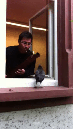 thehotgirlproject: becausebirds:  A perfect duet.  You will never escape this video as long as I am alive. : thehotgirlproject: becausebirds:  A perfect duet.  You will never escape this video as long as I am alive.