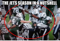 Jet and The Jets: THEJETSSEASONINPANUTSHELL Gotta love the Jets...