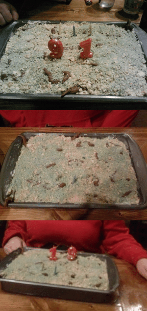 "theladypipsqueak:  salparadisewasright:  theladypipsqueak:  MY MOM DECIDED THAT SINCE I FUCKING HATE CLEANING THE LITTERBOX FOR MY DUMB CATS SHE'S ACTUALLY MAKE ME A FUCKING LITTERBOX CAKE. THIS IS A FUCKING CAKE. THOSE ARE SLIGHTLY MELTED TOOTSIE ROLLS. THOSE ARE LOTS OF COOKIE CRUMBLES. BUT IT LOOKS FUCKING REAL. I ATE THIS IN A RESTAURANT. I RECIEVED WORRIED STARES FROM OTHER PATRONS AS I FEASTED UPON FUCKING CAT POOP. MY BABY SISTER REFUSED TO LET ME EAT THE TOOTSIE ROLLS BECAUSE SHE WAS ONE HUNDRED PERCENT CONVINCED IT WAS POOP, SHE RIPPED IT OUT OF MY HANDS AND THREW IT BACK IT THE PAN. ""SISSY!"" SOMEONE WAS LOOKING ON HORRIFIED AS SHE GRABBED THE DISTURBING LOOKING CANDY OUT OF MY HAND. ""DONT EAT POOP SISSY!"" a li tter box cae k""  congratulations on turning 91  thanks : theladypipsqueak:  salparadisewasright:  theladypipsqueak:  MY MOM DECIDED THAT SINCE I FUCKING HATE CLEANING THE LITTERBOX FOR MY DUMB CATS SHE'S ACTUALLY MAKE ME A FUCKING LITTERBOX CAKE. THIS IS A FUCKING CAKE. THOSE ARE SLIGHTLY MELTED TOOTSIE ROLLS. THOSE ARE LOTS OF COOKIE CRUMBLES. BUT IT LOOKS FUCKING REAL. I ATE THIS IN A RESTAURANT. I RECIEVED WORRIED STARES FROM OTHER PATRONS AS I FEASTED UPON FUCKING CAT POOP. MY BABY SISTER REFUSED TO LET ME EAT THE TOOTSIE ROLLS BECAUSE SHE WAS ONE HUNDRED PERCENT CONVINCED IT WAS POOP, SHE RIPPED IT OUT OF MY HANDS AND THREW IT BACK IT THE PAN. ""SISSY!"" SOMEONE WAS LOOKING ON HORRIFIED AS SHE GRABBED THE DISTURBING LOOKING CANDY OUT OF MY HAND. ""DONT EAT POOP SISSY!"" a li tter box cae k""  congratulations on turning 91  thanks"