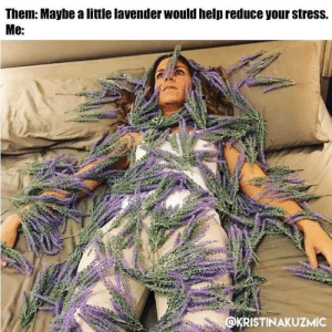 Help, Working, and Stress: Them: Maybe a little lavender would help reduce your stress.  Me:  @KRISTINAKUZMIC ITS NOT WORKING