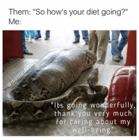 """Dieting, Drunk, and Memes: Them: """"So how's your diet going?""""  Me  Its going wonderfully.  thank you very much  for  caring about my  well being Hi @snakelively, I found ur sibling (I just saw @coolest_kid_on_the_block posted a diet meme a few hrs ago, check him out 🔥🔥🔥) . Follow @meme.rodeo for more memes daily! . cars dogs rap memes smoking nochill music rave festival funny funnymemes savage savage dankmemes gymmotivation fitnessmotivation weed 420 weedhumor savagememes party animals highschool college collegelife fail relatable drunk tumblr snakes"""