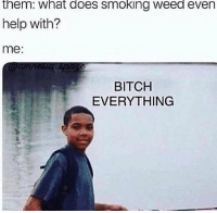 Bitch, Memes, and Smoking: them: what does smoking weed even  help with?  me:  aamnesia.spa  BITCH  EVERYTHING Everything! @eatweedlove