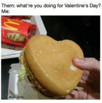 Ex's, Memes, and Shoes: Them: what're you doing for Valentine's Day?  Me.  @soap shoes Sound familiar 😅😅😅 I don't ask for much 😅😅😅 ex valentines galdembanter dt @itsshenell uberCode:SHENG6 www.instagram.com-isawitandii