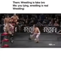 Fake, Funny, and Wrestling: Them: Wrestling is fake bro  Me: you lying, wrestling is real  Wrestling: Bro cmon 😂😂