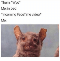 "Beautiful, Facetime, and Memes: Them: ""Wyd""  Me: in bed  *incoming FaceTime video  Me: Tag a beautiful opossum 😊 @cacklinghens for more @cacklinghens @cacklinghens"