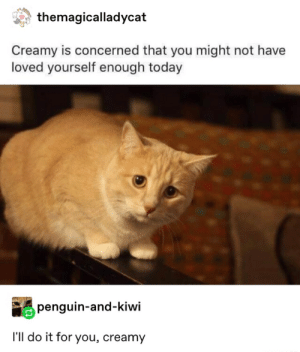 : themagicalladycat  Creamy is concerned that you might not have  loved yourself enough today  penguin-and-kiwi  I'll do it for you, creamy