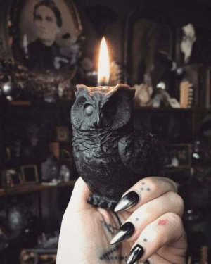 Tumblr, Black, and Blog: themoonisupsidedown:  You can find it on Etsy here   https://www.etsy.com/listing/539120920/black-beeswax-owl-candle-conjuring?utm_source=OpenGraphutm_medium=PageToolsutm_campaign=Share