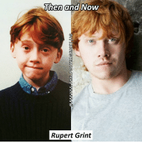 Q- which country are you from? Tag a friend! harrypotter potterhead: Then and Now  Rupert Grint Q- which country are you from? Tag a friend! harrypotter potterhead