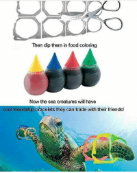Memes, Friendship, and 🤖: Then dip them in food coloring  Now the sea creatures will have  cool friendship bracelets they can trade with their friends!