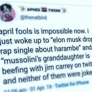 "Jim Carrey, Phone, and Rap: @thenatbird  april fools is impossible now.i  just woke up to ""elon musk dro  rap single about harambe"" and  ""mussolini's granddaughter is  beefing with jim carrey on twit  and neither of them were joke  1106 am-01 Apr 19-Twitter for Phone hochiminhts:  hochiminhts:   surreal:   acolyteultra:  milknjuice:   milknjuice: how did you guys make this image look even worse         Hey, you. You're finally awake. Walked right into that imperial ambush, same as us, and that thief over there."